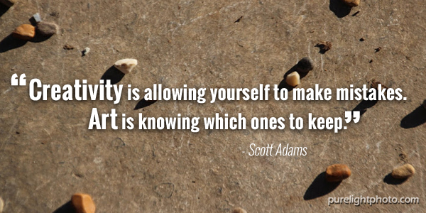 """""""Creativity is allowing yourself to make mistakes Art is knowing which ones to keep."""" - Scott Adams"""